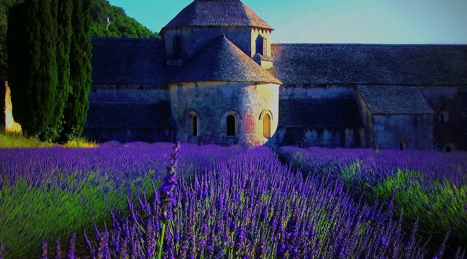 FRANCE - Provence, Abtei de Sénanque, 12310/4456