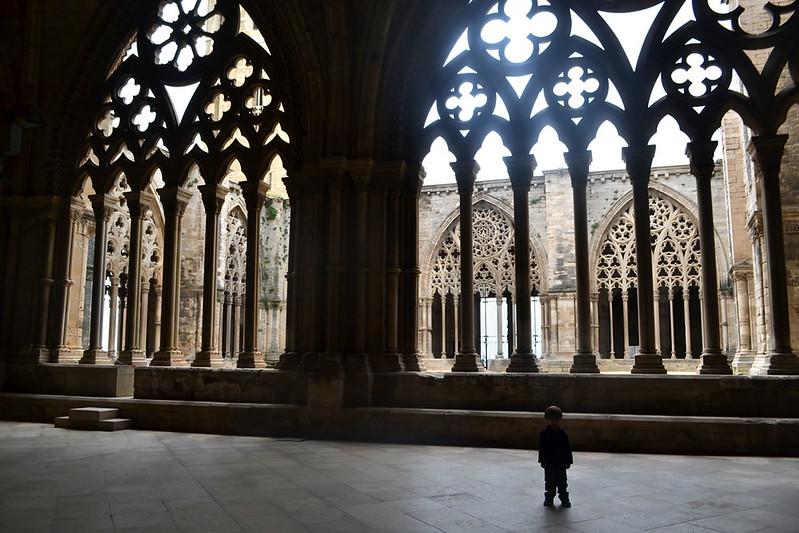 El imponente claustro de la Seu Vella.