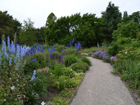 berggarten 6 locuri de vizitat in Hanovra