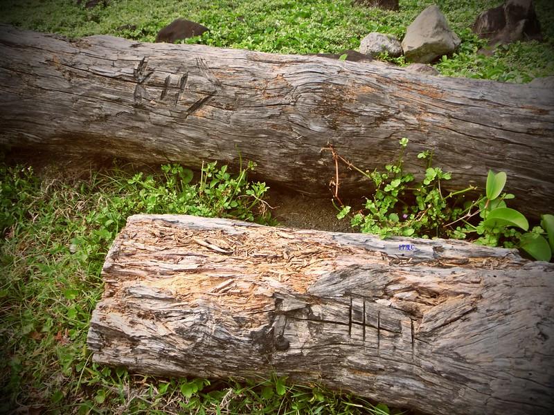 蘭嶼快速導覽-2014環島 (123)