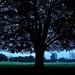 Cityscape when darkness descends....