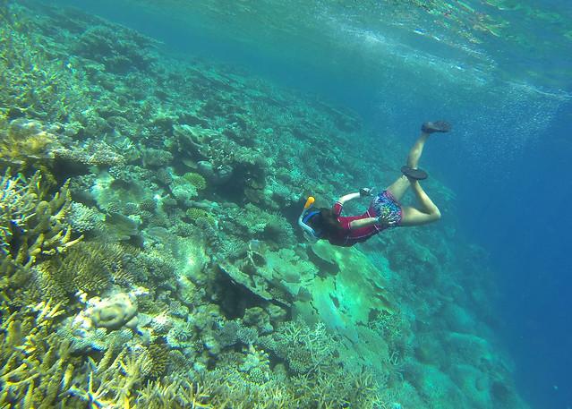 Diana bajando a las profundidades de la isla desierta donde hicimos noche