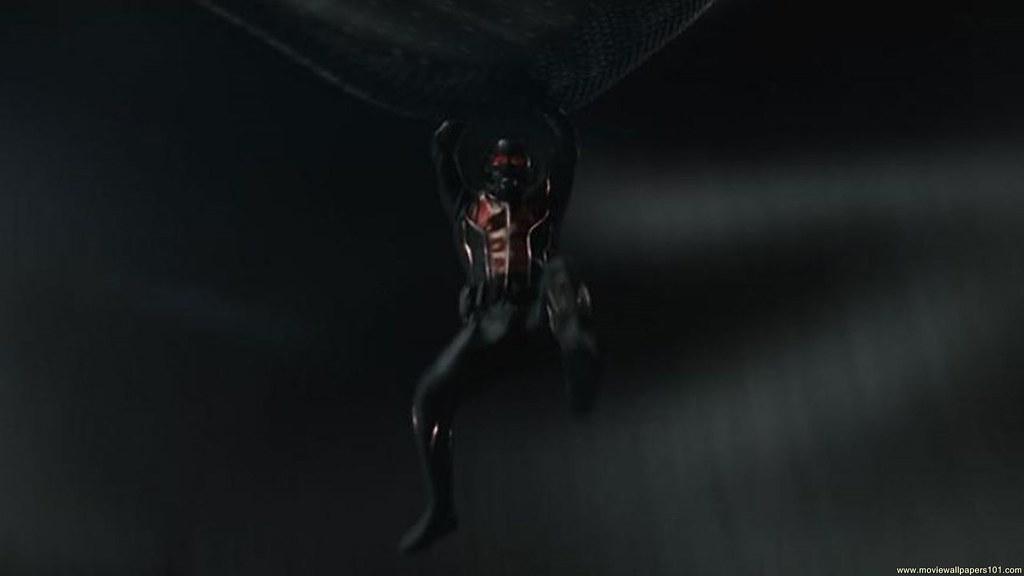 Ant Man 2015 Movie Trailer Hd Wallpaper Stylish Hd Wallp