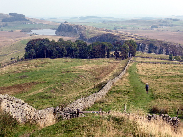 line of curtain wall east of Milecastle 40