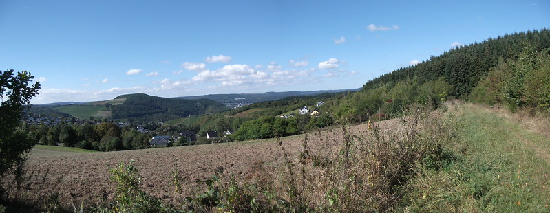 Panoramaweg oberhalb Mertesdorf - zum Vergrößern draufklicken!