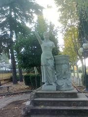 statua polla bis