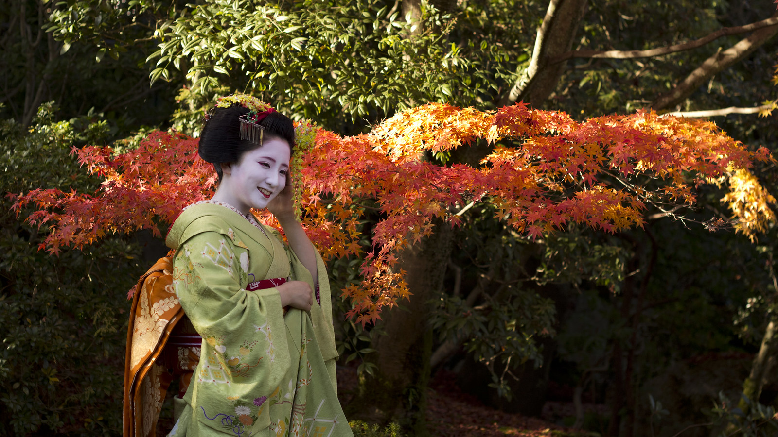 5 Facts about Geisha