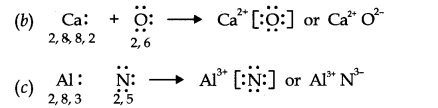 chemical bonding and molecular structure class 11 ncert solutions
