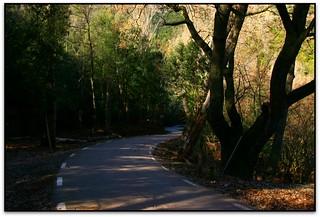 Carretera de Montmany