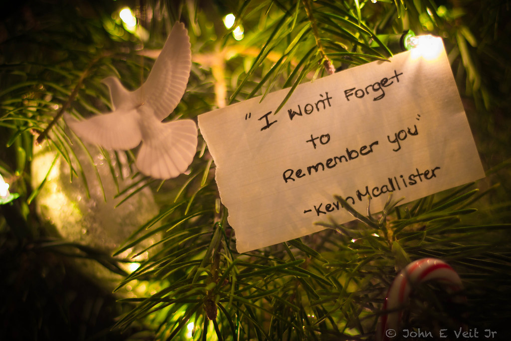 Image Result For Home Alone Quote