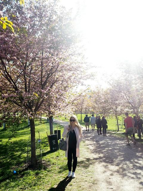 candygirloutfitP5125063,candygirlcherrytreepark2P5125066, cherry park, helsinki, suomi, finland, roihuvuori, kirsikkapuisto, cherry tree park, kirsikkapuu puisto, blossom, kukinta, sakura, itä-helsinki, east helsinki, lovely, ihana, green, pink, vihreä, pinkki, sun, aurinko, flowers, kukat, blossom, kukinta, may, toukokuu, kevät, spring, vaaleanpunainen, takki, coat, light pink, pale pink, cherry blossom girl, kirsikankukka tyttö, nature, luonto,