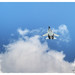 Indian Air Force Sukhoi Su30MKI SB 311