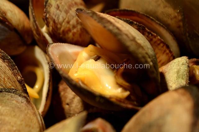 Amandes de Mer à l'ail et au Persil Gratinée © Ana Luthi Tous droits réservés 09