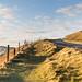 Freshwater Fence Friday - IMG_4442