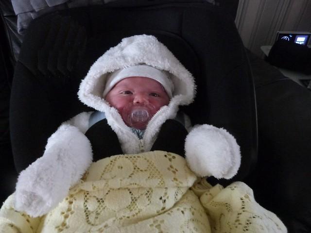 New baby 29899666850_4503e37212_z
