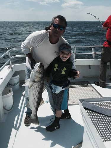Striped bass photo courtesy of Shawn McCardell
