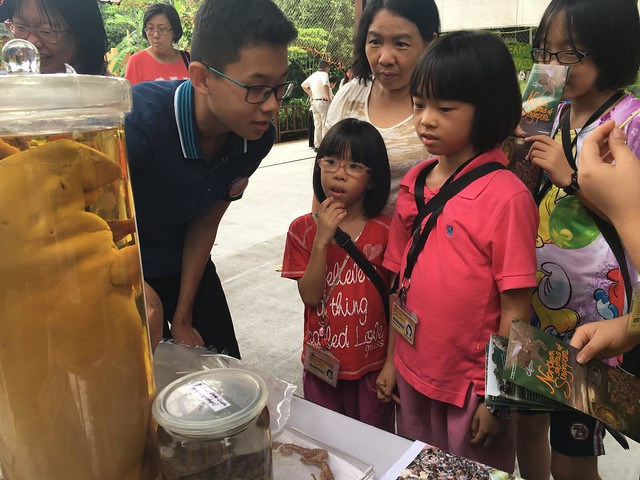 22-Toddycats-Ubin-Day-2016-(4June)-[JoelleLai]