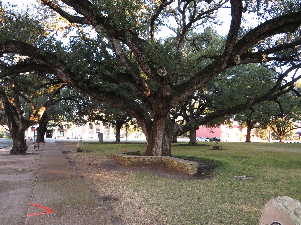 Hanging Tree Goliad County Courthouse Goliad Texas Flickr