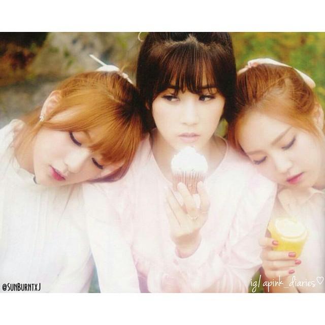 에이핑크 Apink Pink Luv Album Scan ⓒsunburntxj Good Mo Flickr
