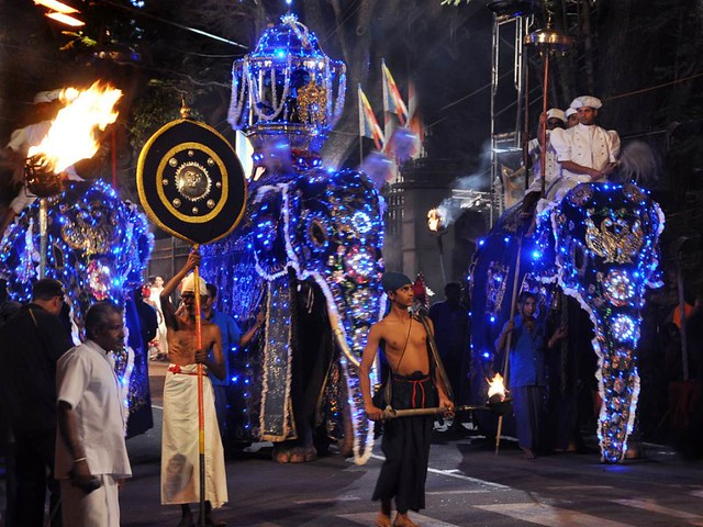 elephants dressed up in bright costumes in a procession