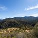 Kings Canyon & Sequoia - 191
