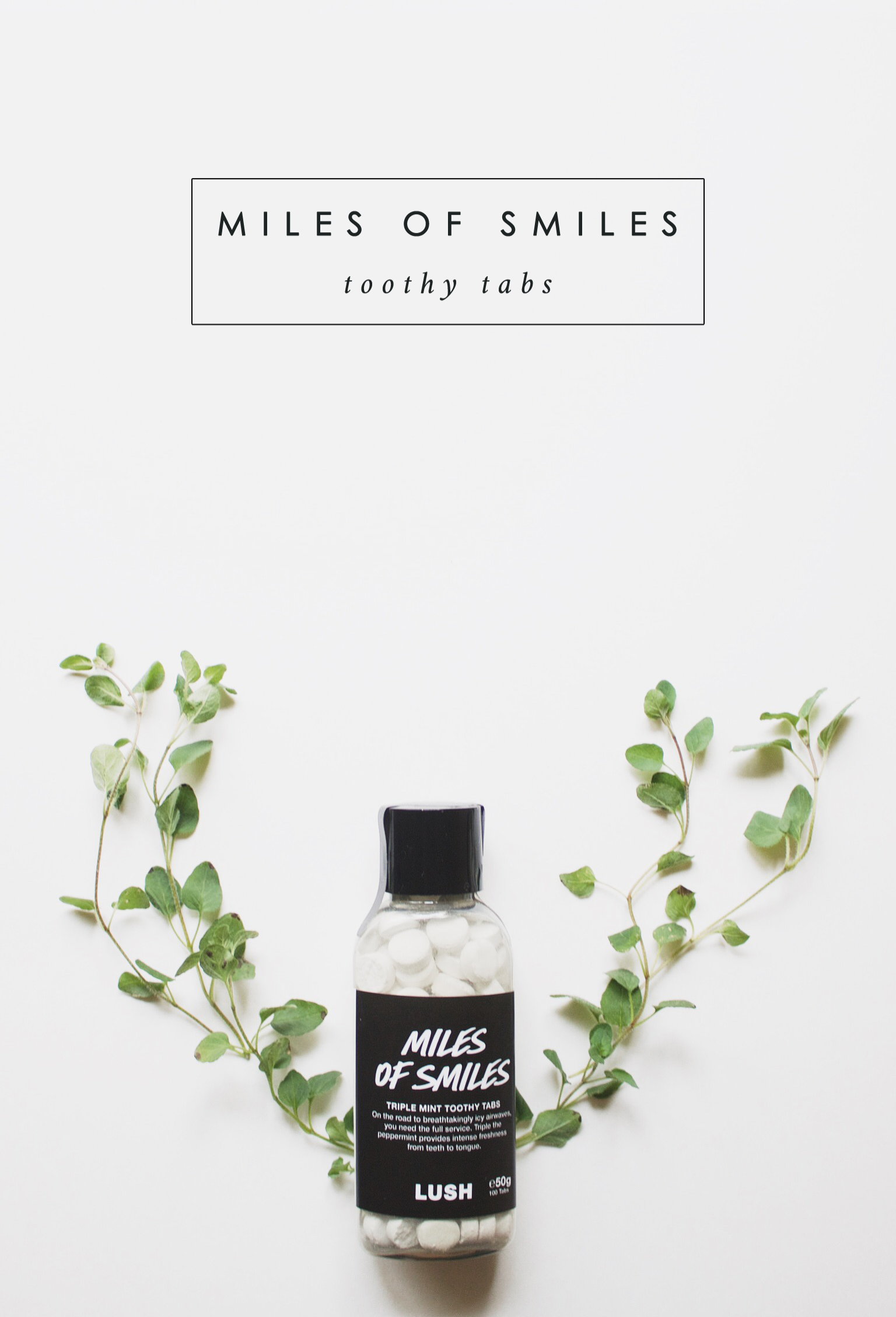 Miles of Smiles Lush Bramble and Thorn