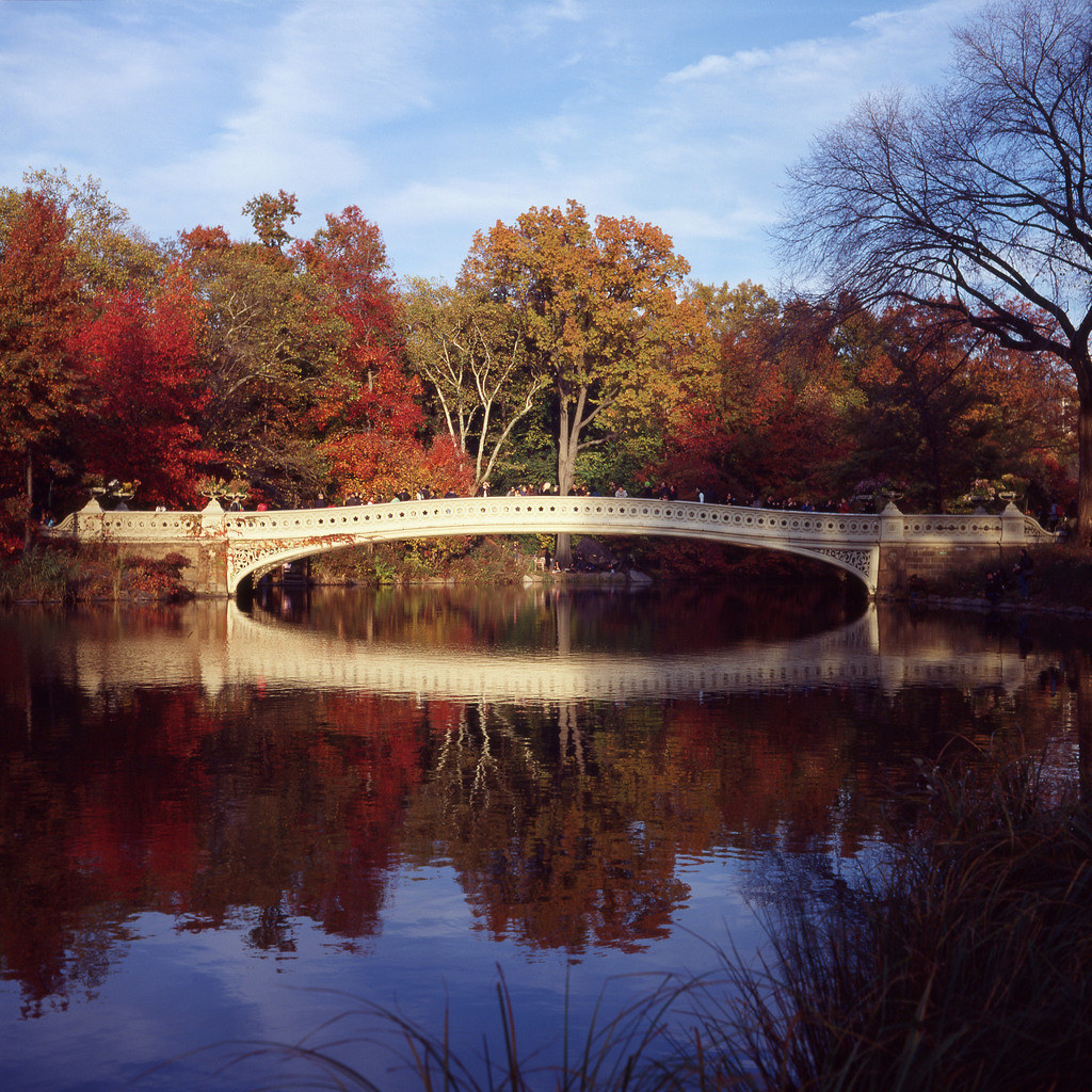 40 Central Park South Nyc: Bow Bridge At Central Park, New York