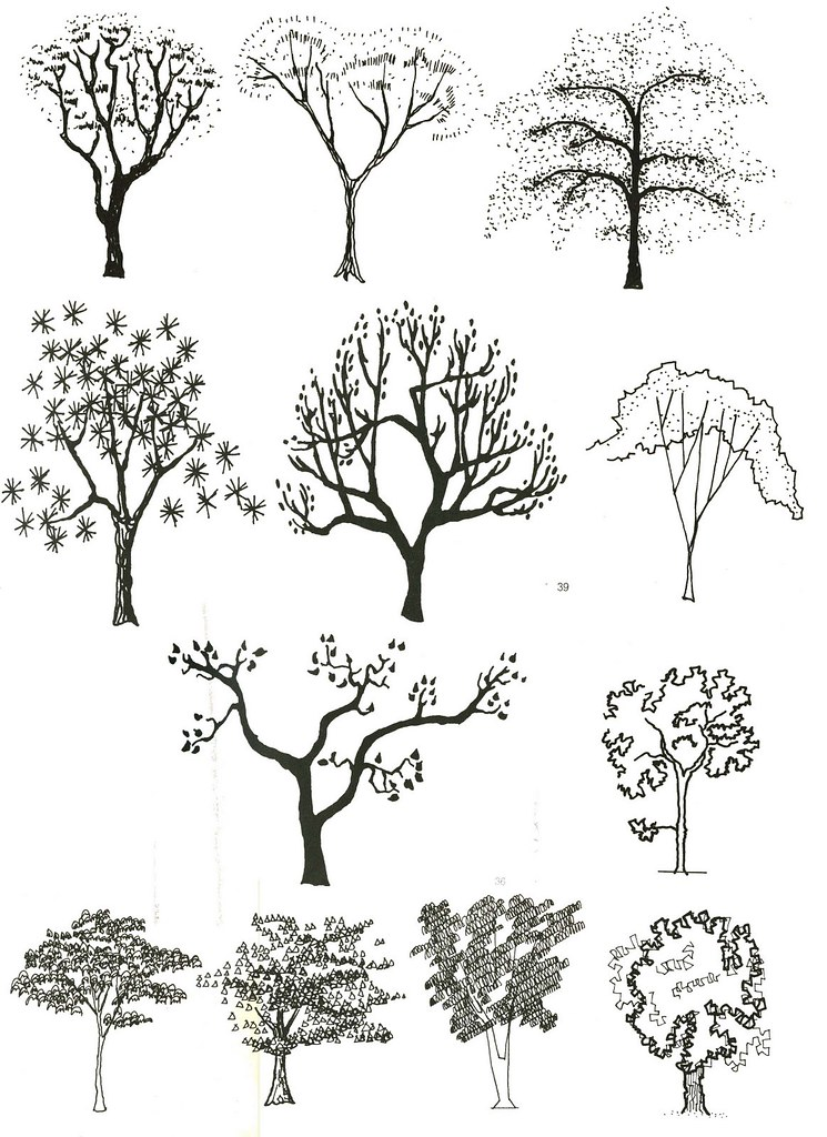 Elevation And Plan Of Trees : Elevation joy studio design gallery best