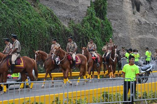 Bild mit besockten Pferden bei der Rallye Paris Dakar