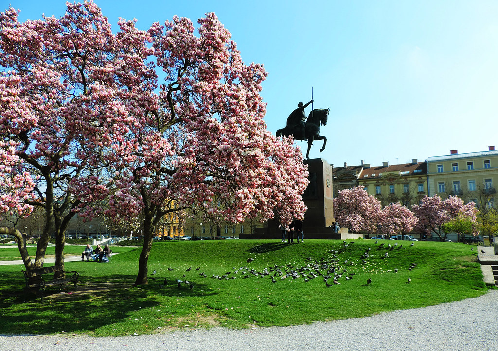 Festival Of Flowers: Trg kralja Tomislava, Zagreb, Croatia