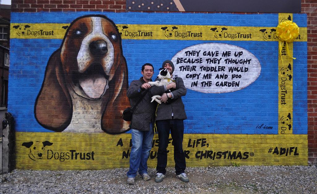 Dogs Trust Puppy Training