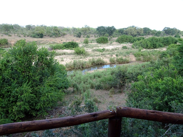Lion Sands Safari Day 3- Breakfast at Inkwazi Hide-004