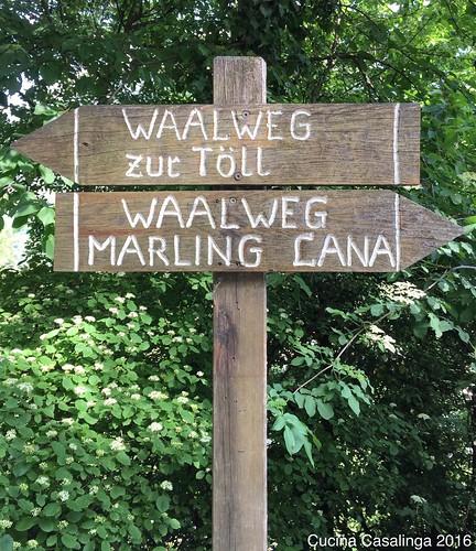 2016 05 Marlinger Waalweg 9