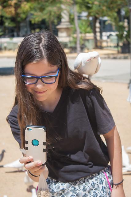 Pigeons Parque Maria Luisa Sevilla