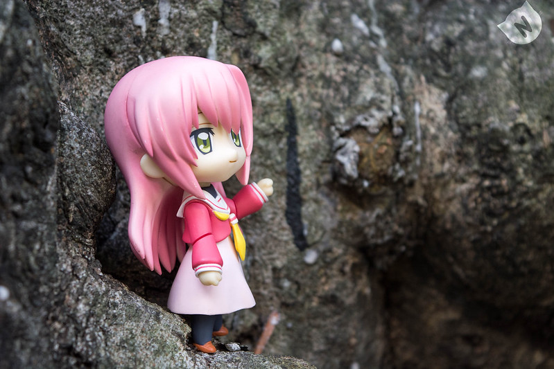 Katsura even went on top of a tree