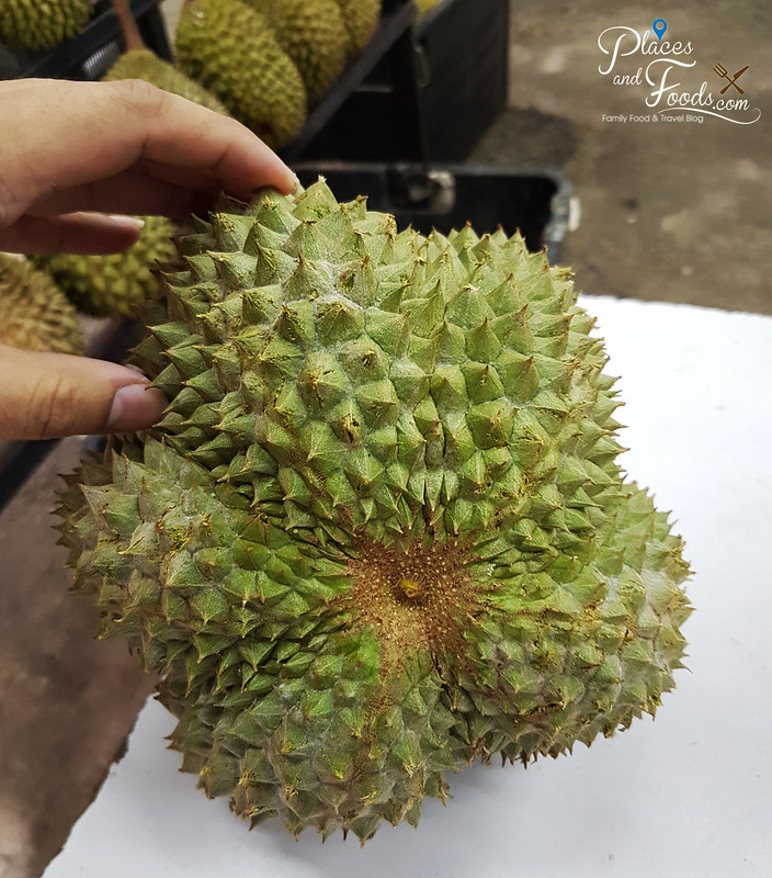 black thorn durian malaysia star lines