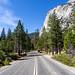 Kings Canyon & Sequoia - 257