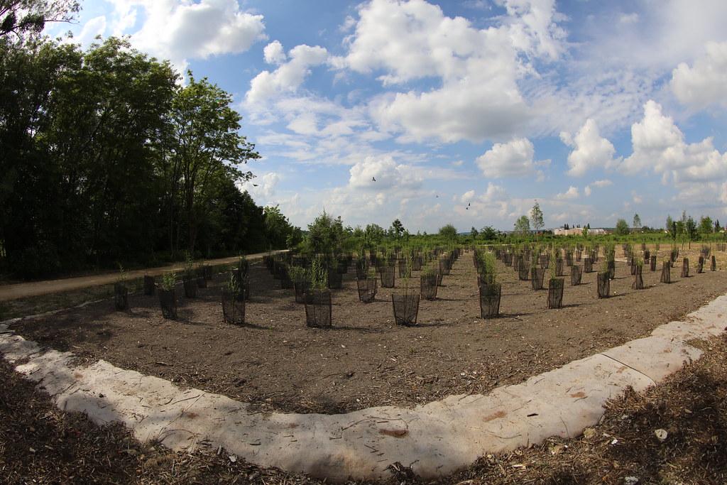 Le parc du peuple de l 39 herbe nicolas duprey conseil for Parc des yvelines