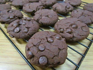 Chocolate Gingerbread Cookies with Chocolate Chips