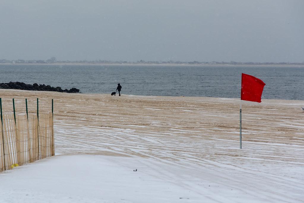 Dog Walking Winter Essentials To Stay Warm Leash Pouch