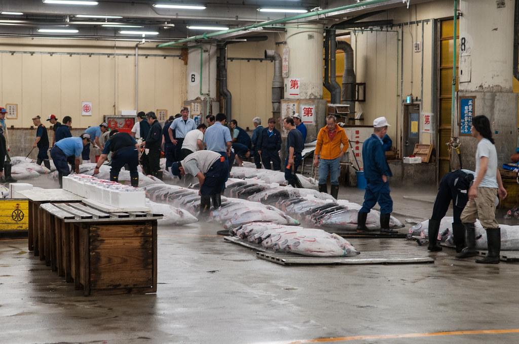 tsukiji fish market map pdf