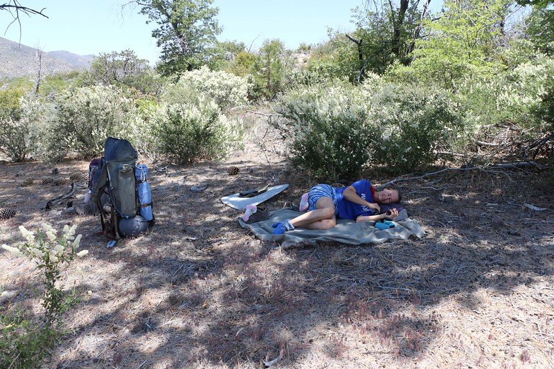 We took lunch and a longer rest at PCT mile 296 after the uphill climb, due to the midday heat