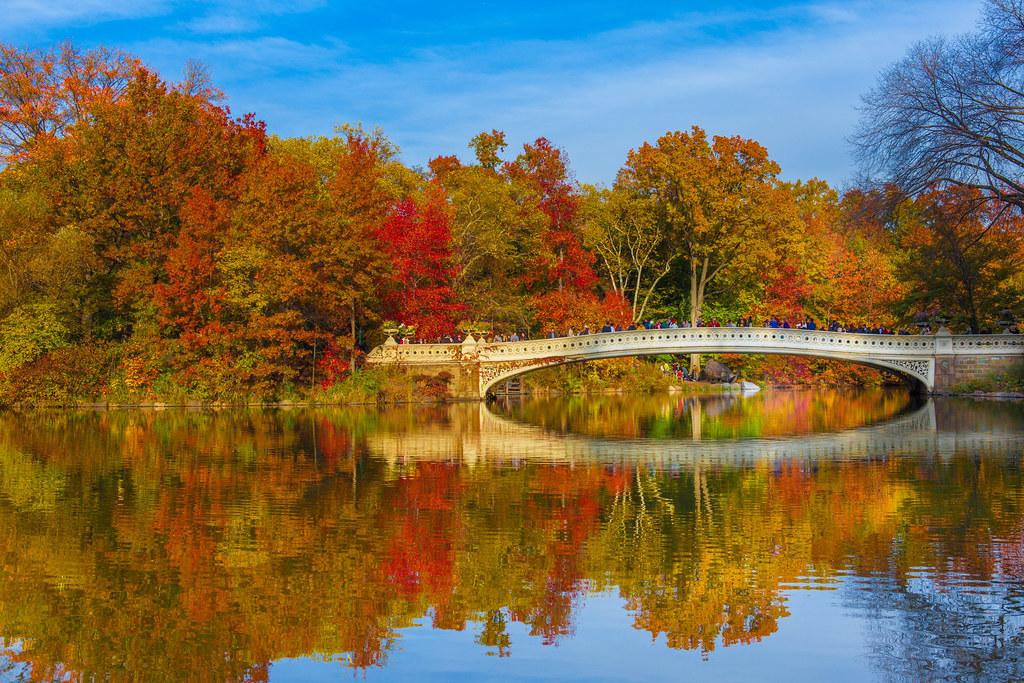 Beautiful fall foliage reflecting off on water