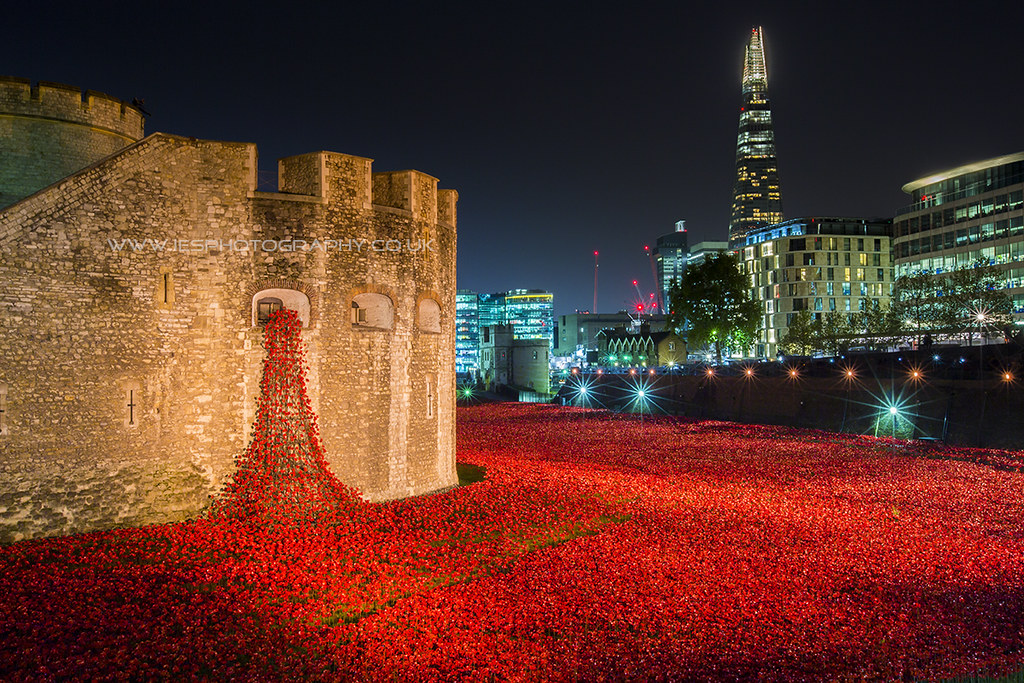 Images of Tower of London Poppies at Night Tower of London at Night