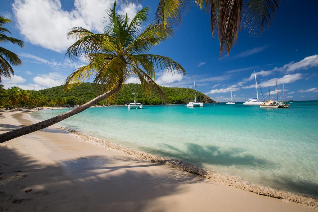 salt whistle bay karibiksegelt246rn caribbean sailing