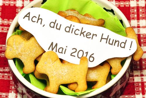"""Butterplätzchen backen ist in der wärmeren Jahreszeit eine kleine Herausforderung. Die Butter muss ja sehr kalt sein, der Teig ebenso - und man kann das Blech nicht zwischen zwei Backgängen auf dem Balkon auskühlen lassen, wie das bei der Weihnachtsbäckerei möglich ist. Aber die Zeit drängte und ich konnte zum Glück noch einen kühleren Tag mit """"nur"""" 22 Grad nutzen ... den schon morgen findet in der """"Seggemer Kommödie-Scheier"""" in Mannheim-Seckenheim die Aufführung des Theaterstückes """"Ach, du dicker Hund"""" statt. Das Kommödie von Sabine Drössler wird von der Seckenheimer Gruppe """"Blouß fa G'spass"""" ganz sicher wieder so gekonnt witzig auf die Bühne gebracht wie die Seckenheimer das von ihrer Theatergruppe gewohnt sind. Um 20 Uhr geht's los und ich bin froh, dass die """"dicken Butterhunde"""" noch rechtzeitig fertig geworden sind :-))) Fotos: Brigitte Stolle"""