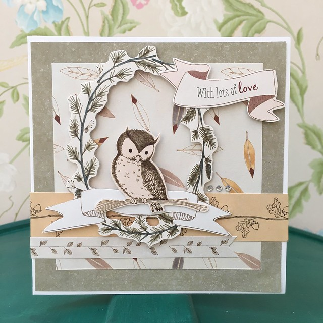 Tales from Willson Wood Owl Card by StickerKitten