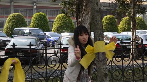 樹黨成員也為行道樹綁上黃絲帶