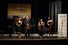 Solitalian quartet foto ufficiale 2