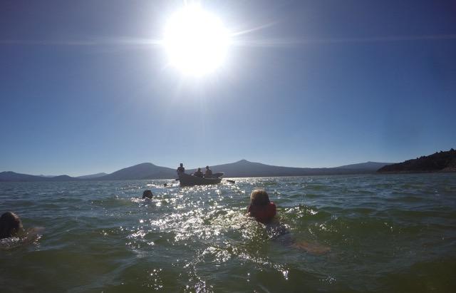 swimming-davis